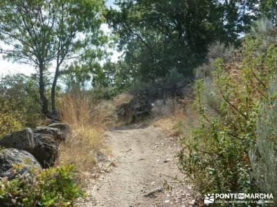 Valle del Alto Alberche;informacion sobre el tejo mochila para trekking